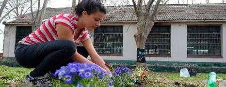TALLERES PROTEGIDOS DEL BORDA