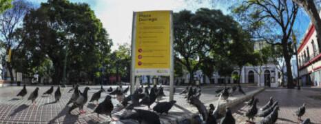 INGRESO DE EMERGENCIA A ARTESANXS Y MANUALISTAS